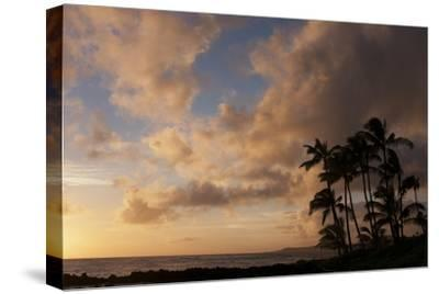 Silhouetted Palm Trees and Pinkish Clouds at Sunset on Poipu Beach-Marc Moritsch-Stretched Canvas Print