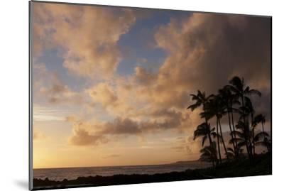 Silhouetted Palm Trees and Pinkish Clouds at Sunset on Poipu Beach-Marc Moritsch-Mounted Photographic Print