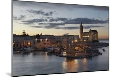 A Dusk View of the Fishing Harbor of Trani-Nigel Hicks-Mounted Photographic Print