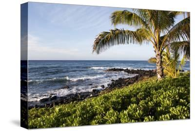Palm Trees, Volcanic Rock, and Surf on the Beaches at Poipu-Marc Moritsch-Stretched Canvas Print