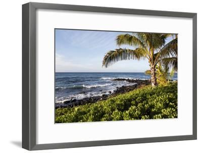 Palm Trees, Volcanic Rock, and Surf on the Beaches at Poipu-Marc Moritsch-Framed Photographic Print