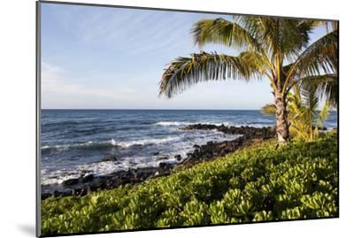 Palm Trees, Volcanic Rock, and Surf on the Beaches at Poipu-Marc Moritsch-Mounted Photographic Print