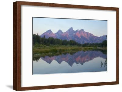 A Reflection of the Grand Teton Range in the Snake River-Barrett Hedges-Framed Photographic Print