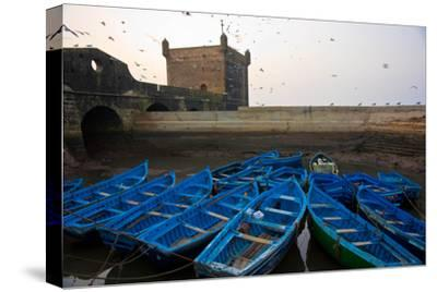 Birds Fly Over the Traditional Blue Boats of Essaouira Harbor-Cristina Mittermeier-Stretched Canvas Print
