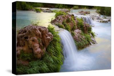 Havasu Creek Rushes Over Falls in Havasu Canyon-Derek Von Briesen-Stretched Canvas Print