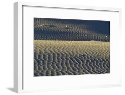 Reflections of Sunlight in Gypsum Sand Dunes-Raul Touzon-Framed Photographic Print
