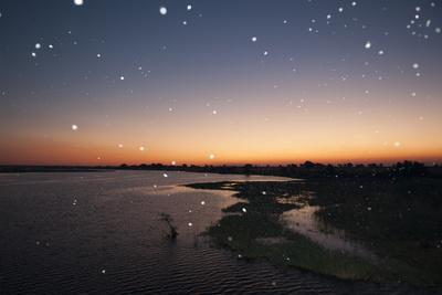 Thousand of Insects Flying Over the Chobe River at Sunset-Sergio Pitamitz-Framed Photographic Print