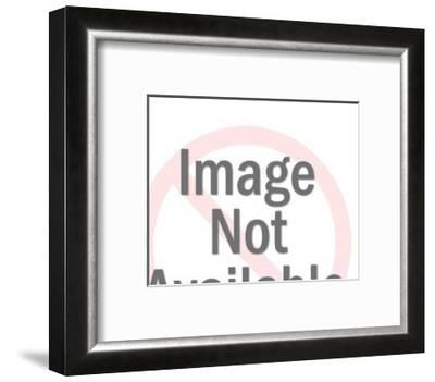 Globe on Stand-Pop Ink - CSA Images-Framed Art Print