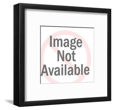 Ducks in Rifle Scope-Pop Ink - CSA Images-Framed Art Print