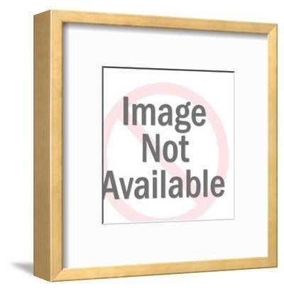 Man Taking Photographs-Pop Ink - CSA Images-Framed Art Print