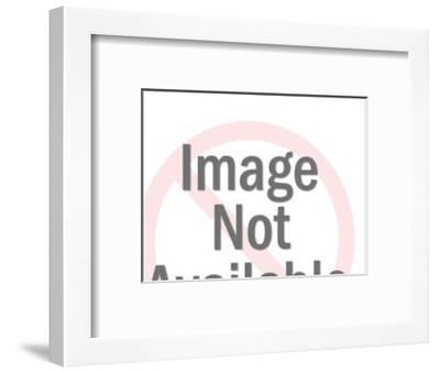 Ocean Liner-Pop Ink - CSA Images-Framed Art Print