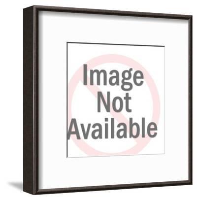Eagle on Block-Pop Ink - CSA Images-Framed Art Print