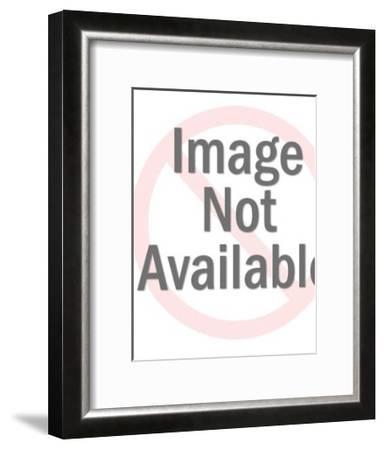 Seal Balancing Beach Ball-Pop Ink - CSA Images-Framed Art Print