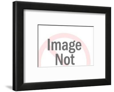 Hummingbird-Pop Ink - CSA Images-Framed Art Print