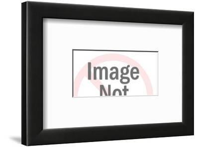 Beetle Car-Pop Ink - CSA Images-Framed Art Print