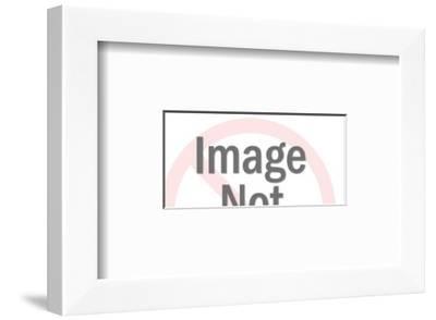 Stylized Eagle-Pop Ink - CSA Images-Framed Art Print