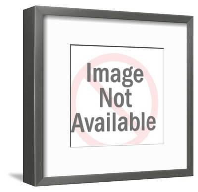 Roman Centurion-Pop Ink - CSA Images-Framed Art Print