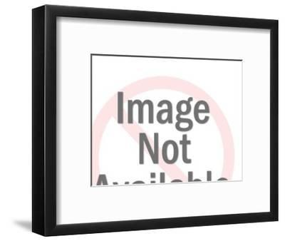 Silhouettes of Male and Female Graduates-Pop Ink - CSA Images-Framed Art Print