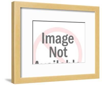 Horse Skeleton-Pop Ink - CSA Images-Framed Art Print