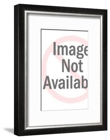Standing Polar Bear-Pop Ink - CSA Images-Framed Art Print