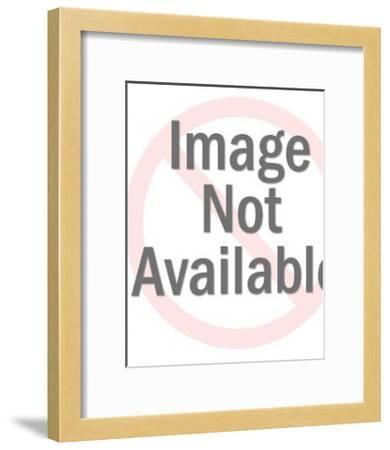Canadian Goose-Pop Ink - CSA Images-Framed Art Print