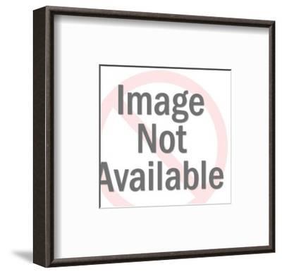Hen-Pop Ink - CSA Images-Framed Art Print