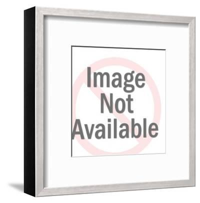 Bird Icon-Pop Ink - CSA Images-Framed Art Print