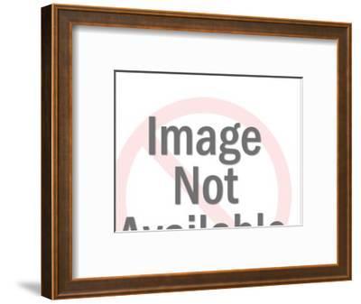 Shadowy Man Looking at Woman-Pop Ink - CSA Images-Framed Art Print