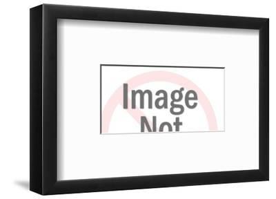 Shelving-Pop Ink - CSA Images-Framed Art Print