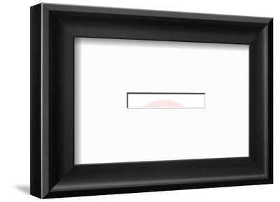 Funeral Home-Pop Ink - CSA Images-Framed Art Print