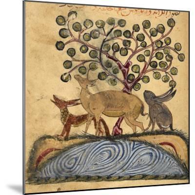 Deer-type, Rabbit and Fox, Standing Over Water-Aristotle ibn Bakhtishu-Mounted Giclee Print