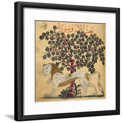 A Lion Standing Beneath a Tree--Framed Giclee Print
