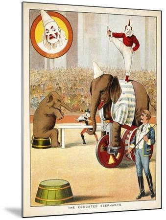 The Educated Elephants'. an Involving Elephants and Clowns in a Circus--Mounted Giclee Print