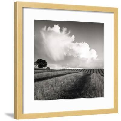 Large White Cloud Near Bilsington, Kent, 1981.-Fay Godwin-Framed Giclee Print