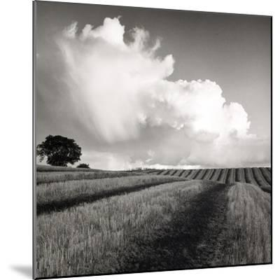 Large White Cloud Near Bilsington, Kent, 1981.-Fay Godwin-Mounted Giclee Print