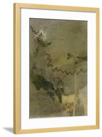 Blurred Image Of Flowers-Fay Godwin-Framed Giclee Print