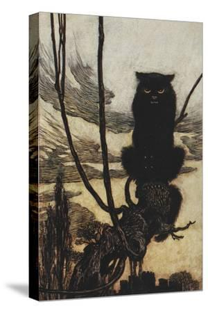 Illustration From Jorinda and Joringel Of a Black Cat-Arthur Rackham-Stretched Canvas Print