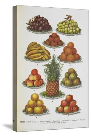 Assorted Fruits Including Pineapple-Isabella Beeton-Stretched Canvas Print