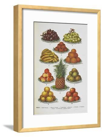 Assorted Fruits Including Pineapple-Isabella Beeton-Framed Giclee Print