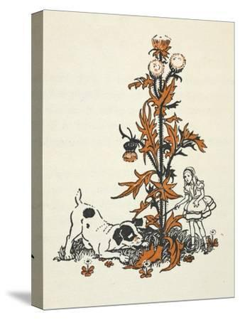 Shrunken Alice and the Puppy by a Giant Thistle.-Gwynedd Hudson-Stretched Canvas Print