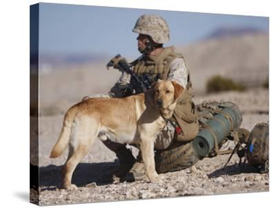 A Yellow Labrador Retriever And His Handler Take a Break in the Desert-Stocktrek Images-Stretched Canvas Print