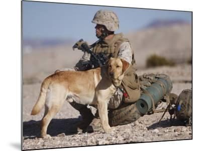 A Yellow Labrador Retriever And His Handler Take a Break in the Desert-Stocktrek Images-Mounted Photographic Print