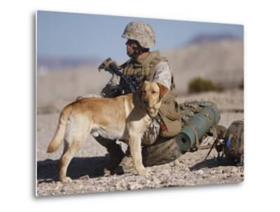 A Yellow Labrador Retriever And His Handler Take a Break in the Desert-Stocktrek Images-Metal Print