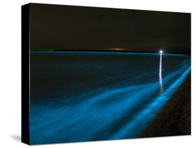 Bioluminescence in Waves in the Gippsland Lakes, Victoria, Australia-Stocktrek Images-Stretched Canvas Print