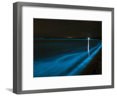 Bioluminescence in Waves in the Gippsland Lakes, Victoria, Australia-Stocktrek Images-Framed Photographic Print