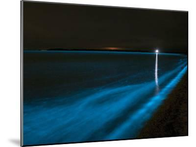 Bioluminescence in Waves in the Gippsland Lakes, Victoria, Australia-Stocktrek Images-Mounted Photographic Print