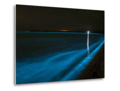 Bioluminescence in Waves in the Gippsland Lakes, Victoria, Australia-Stocktrek Images-Metal Print