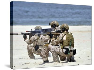 Navy SEALs Participate in a Capabilities Exercise-Stocktrek Images-Stretched Canvas Print