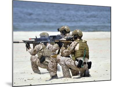 Navy SEALs Participate in a Capabilities Exercise-Stocktrek Images-Mounted Photographic Print