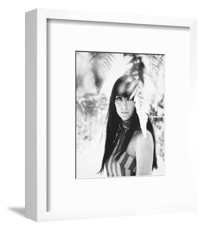 Cher--Framed Photo